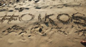 Asia Meet 2016 Participants Write oikos in Indian Sand